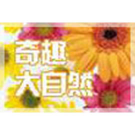 天津电视台六套科教频道奇趣大自然