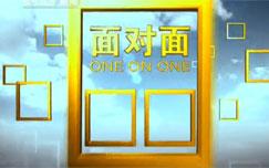 中央电视台CCTV-13新闻面对面
