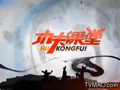 河南电视台国际频道功夫课堂