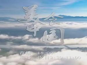 中央电视台CCTV4中文国际频道美食中国