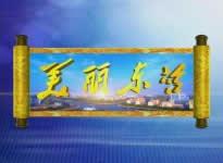 东营电视台一套新闻综合频道美丽东营