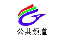 广安电视台二套公共频道